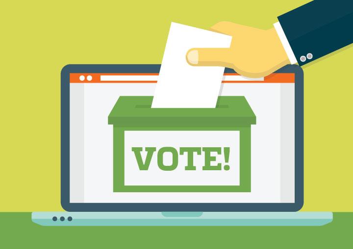 Image result for Internet VOTING
