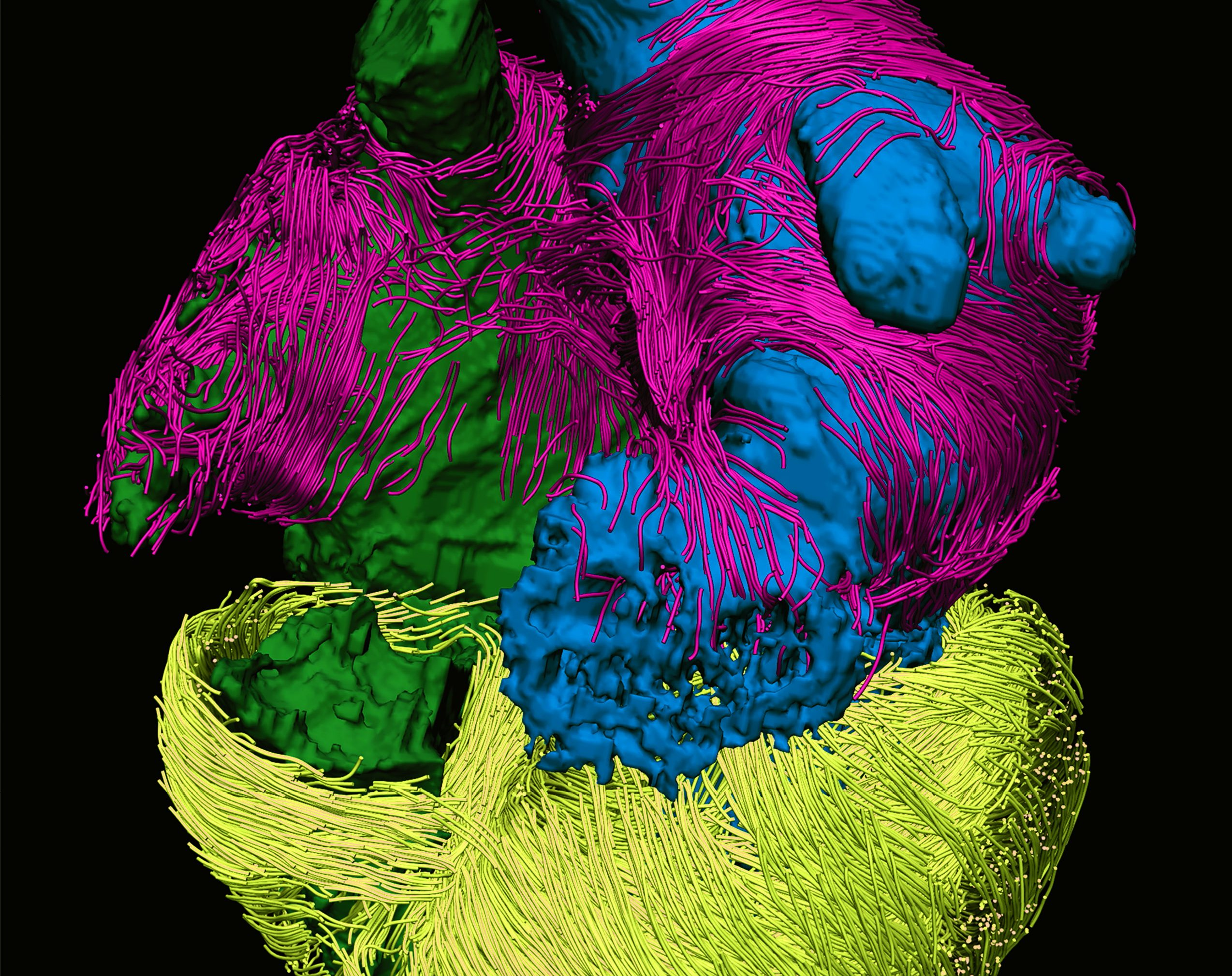 Nature Reviews Cardiology Impact