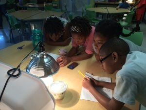 Fifth grade students test materials for their ice-cream package designs.
